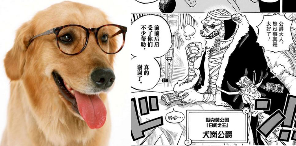 犬岚.jpg