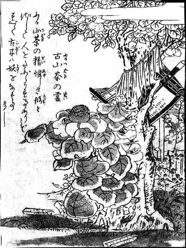 081古山茶の霊.jpg