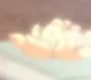 娜美吃橘子.png